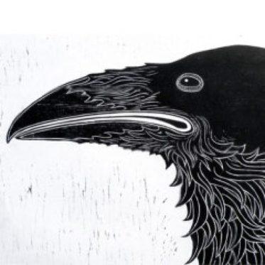cropped-raven-icon.jpg